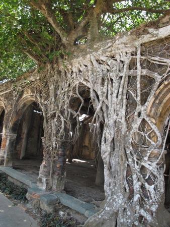 """Ngôi đình cổ """"độc nhất vô nhị"""" nằm trong lòng cây bồ đề 2"""