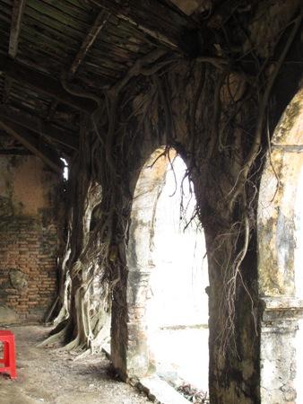 """Ngôi đình cổ """"độc nhất vô nhị"""" nằm trong lòng cây bồ đề 4"""