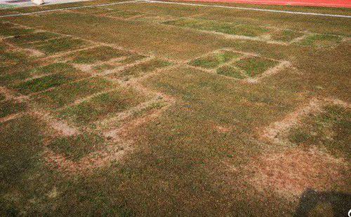 Chứng kiến mặt sân xấu như mặt ruộng, giải bóng đá số 1 Trung Quốc sốc nặng, vội vã hủy trận đấu