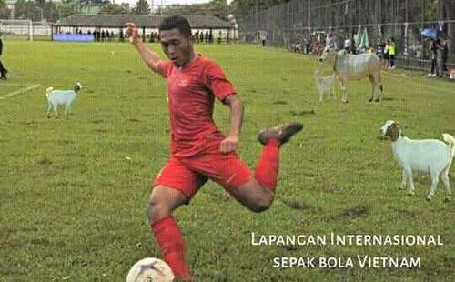Sau scandal sân bãi, Indonesia nhận được