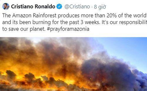 Các siêu sao bóng đá cầu nguyện cho rừng Amazon, Ronaldo tuyên bố: